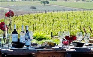destacada_wine-1024x768